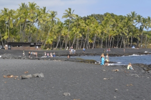 Punalu'u black sand beach.