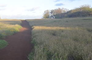 The red path to Maka Horse Beach.