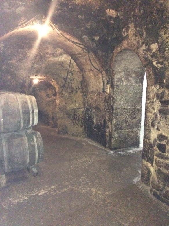 Cave of Bodega Carlos San Pedro Perez de Vinaspre, directly under the family's house