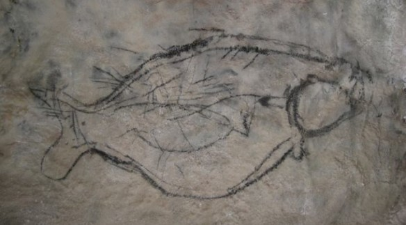 Fish in Cueva Pilete. Note the fish inside the fish.