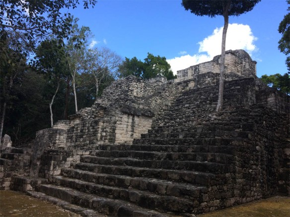 Calakmul Temple of Venus (I think).