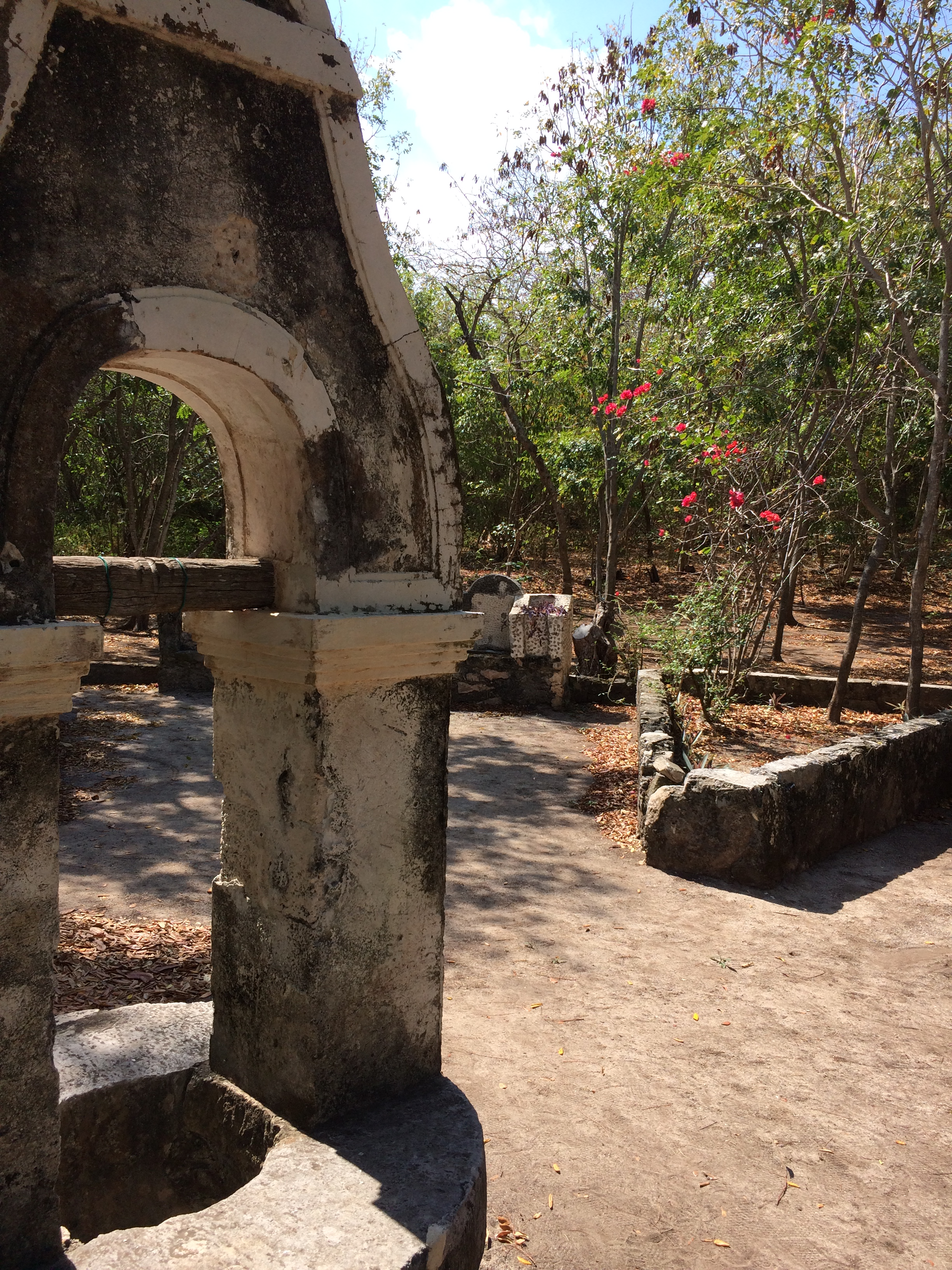 The well at the center of the forgotten garden.